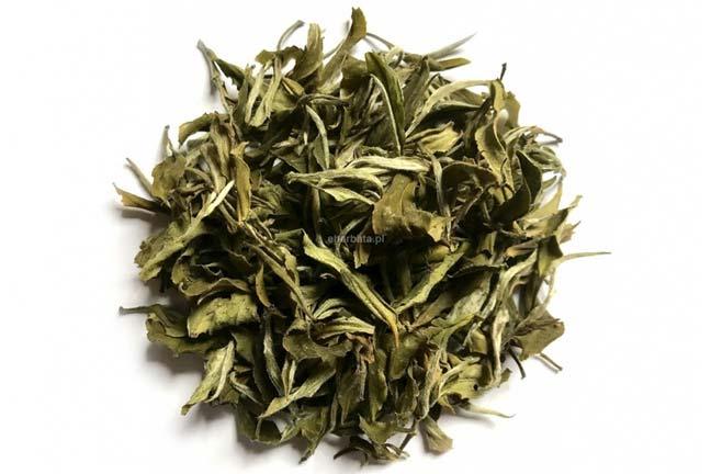 Biała herbata – Doceńmy jej zalety